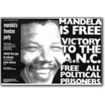 mda33. Mandela Freedom Party