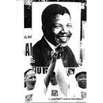 pic8830. Nelson Mandela Freedom March