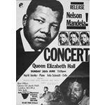po148. Concert for Mandela